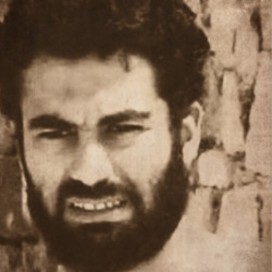 Mohamed Teleb